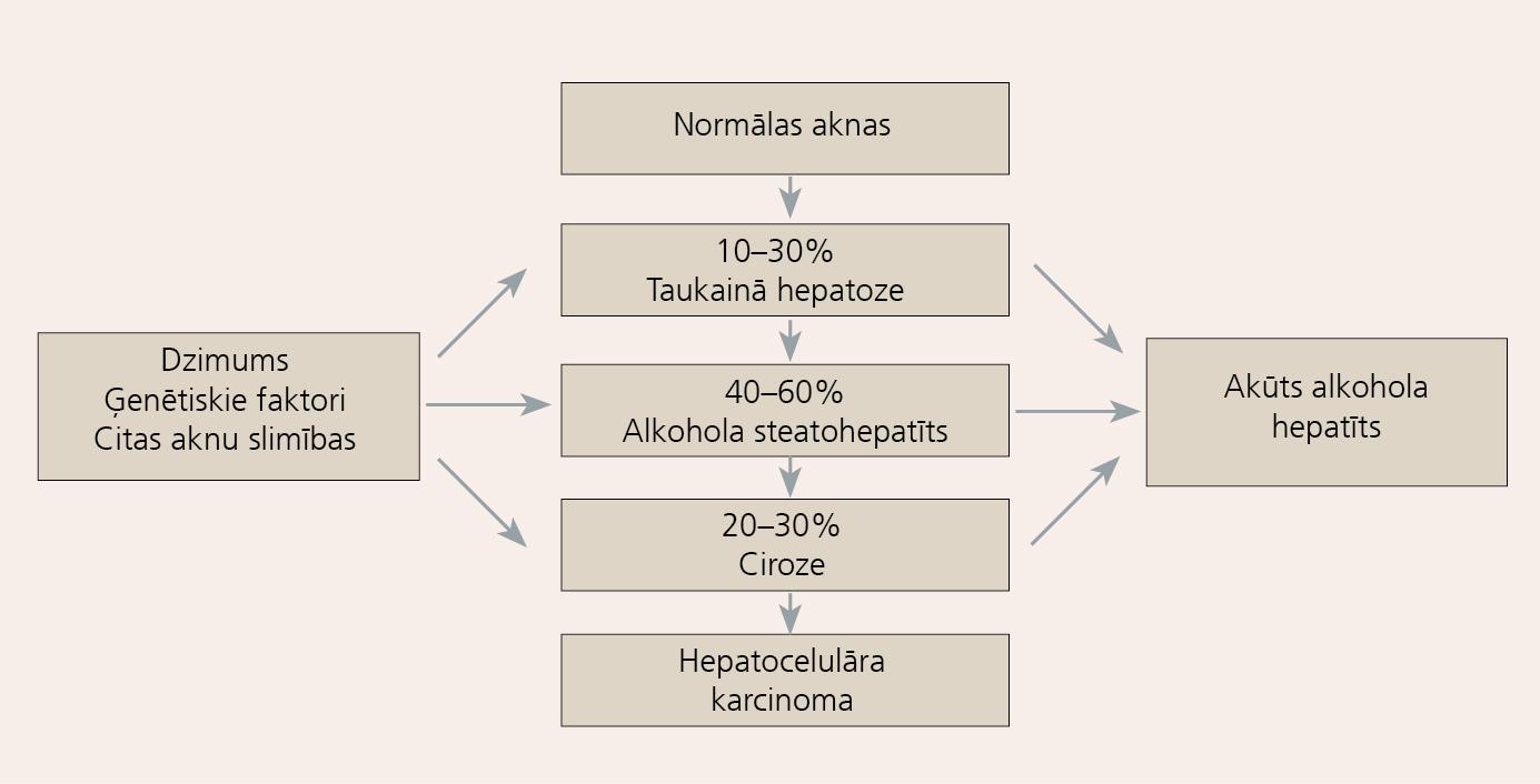 Alkohola lietošanas ietekme uz aknām