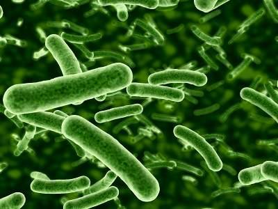 Probiotikas un ar antibiotiku lietošanu saistīta diareja
