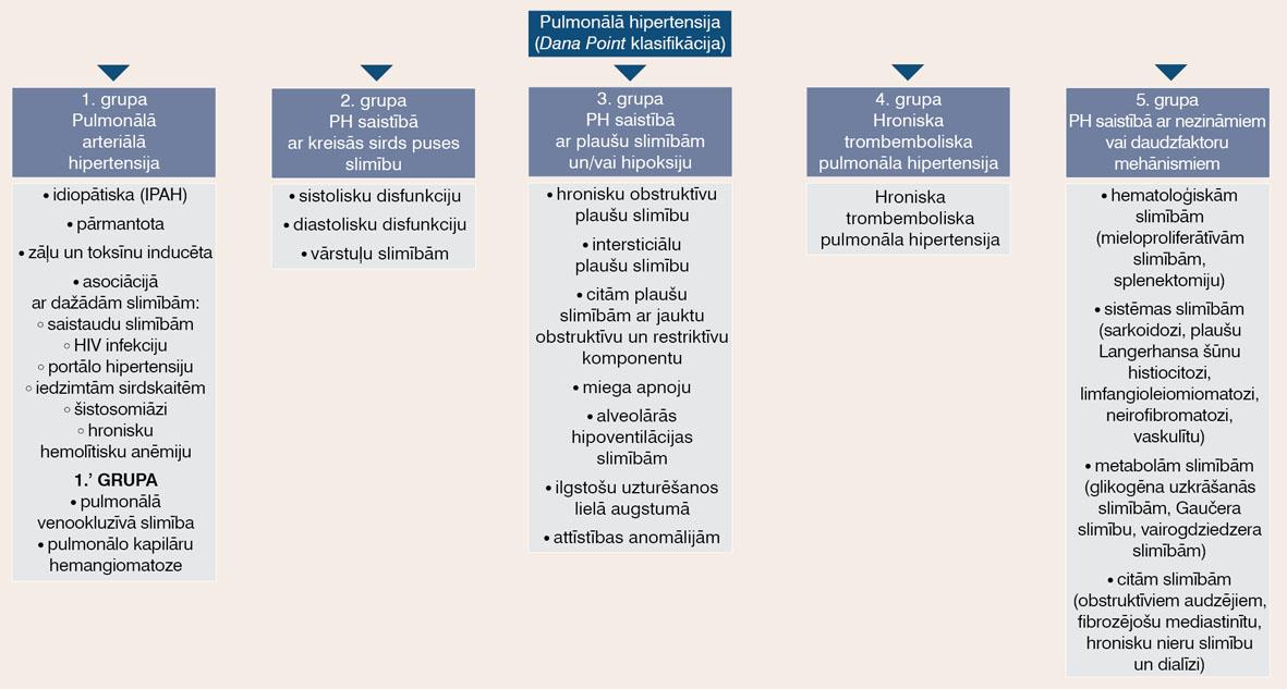 Pulmonālās hipertensijas klasifikācija