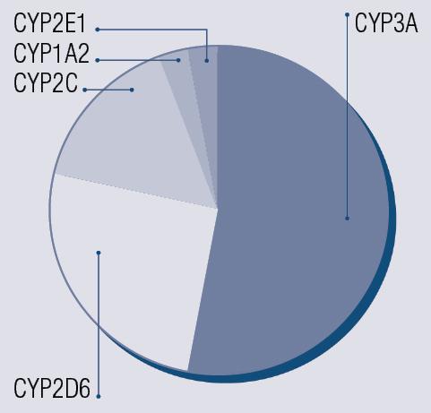 Relatīva nozīme CYP450  medikamentu metabolismā [14]