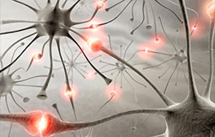Sirdsdarbības frekvences variabilitāte ļauj prognozēt epilepsijas lēkmes