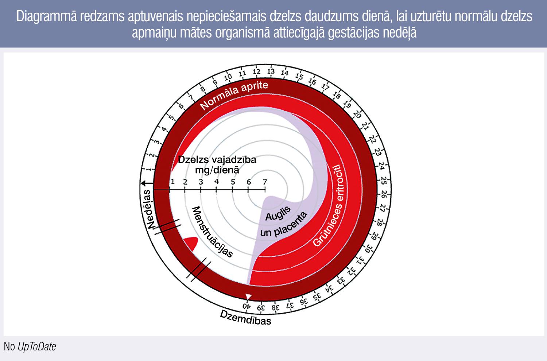Diagrammā redzams aptuvenais nepieciešamais dzelzs daudzums dienā, lai uzturētu normālu dzelzs apmaiņu mātes organismā attiecīgajā gestācijas nedēļā