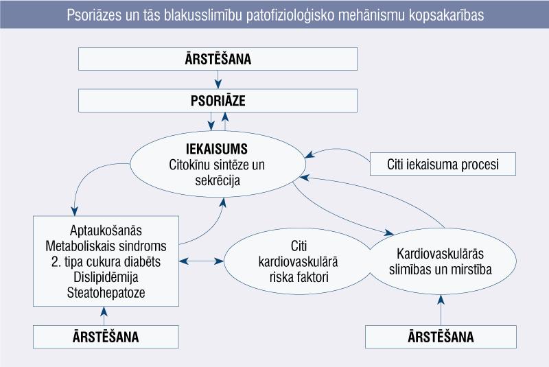 Psoriāzes un tās blakusslimību patofizioloģisko mehānismu kopsakarības