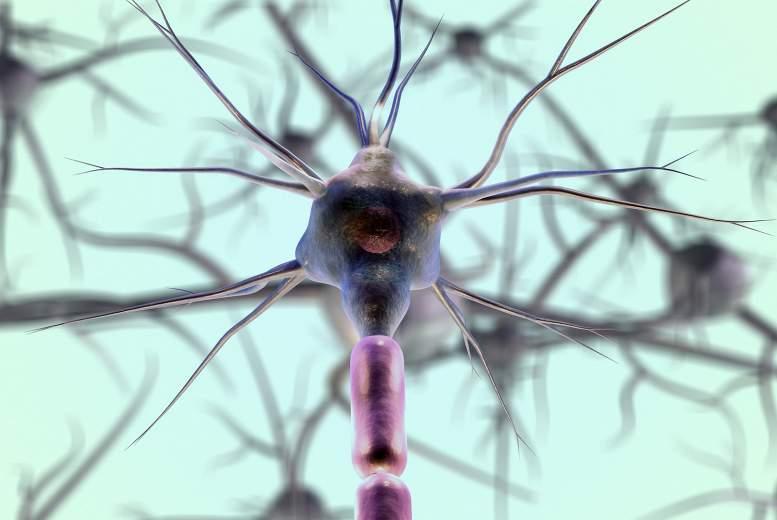 Multiplā skleroze. Slimību ietekmējošie faktori