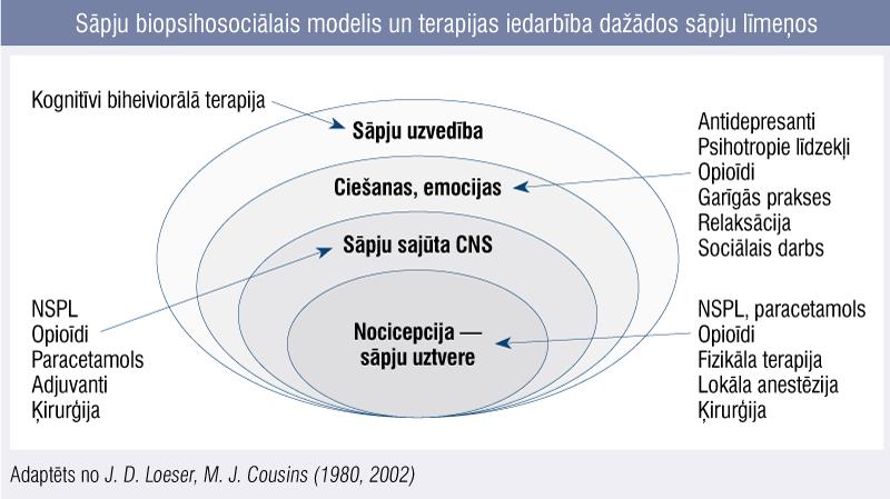 Sāpju biopsihosociālais modelis un terapijas iedarbība dažādos sāpju līmeņos
