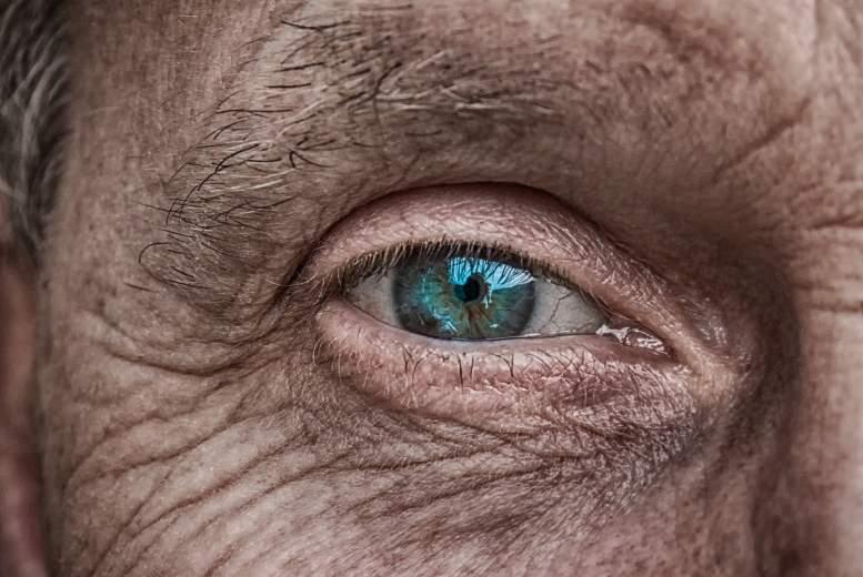 Kumulatīvās incidences un primāras atvērta kakta glaukomas smaguma pakāpes novērtējums pacientiem ar okulāru hipertensiju