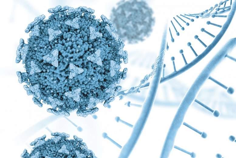 ZVA komentārs: Ko nozīmē antivielu esamība organismā pēc vakcinācijas?