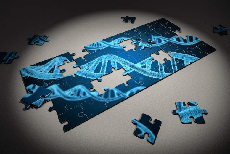 Gandrīz katram piektajam pacientam, kurš mirst no neizskaidrojamas pēkšņas sirds nāves, ir konkrēts gēns