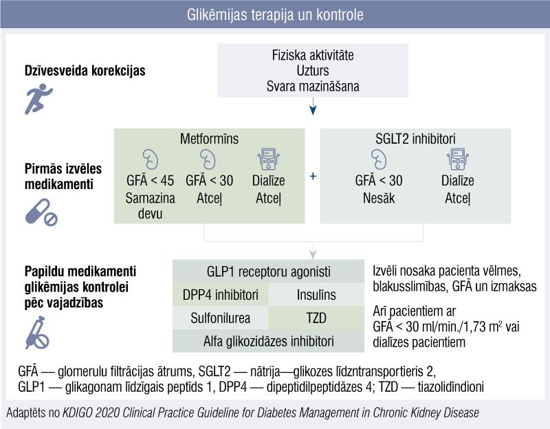 Glikēmijas terapija un kontrole